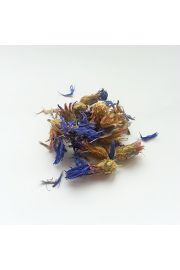 Chaber bławatek - kwiat
