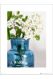 Blue Bottle Flowers - art print