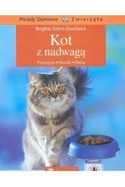 Kot z nadwagą