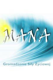 Mana - sesja gromadzenia energii - Paweł Stań