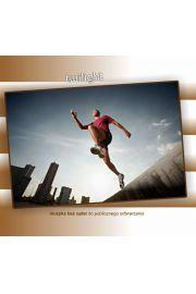 Twilight, CD