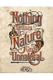 Fantastyczne zwierzęta i jak je znaleźć Nienaturalne - plakat