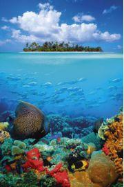 Tropikalna Wyspa i Rafa Koralowa - plakat