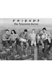 Friends Przyjaciele - plakat