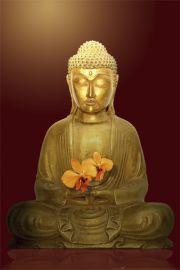 Buddha Flower - Budda - plakat