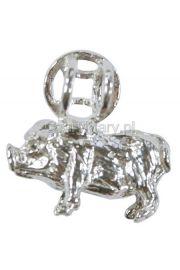 Świnia chiński znak zodiaku