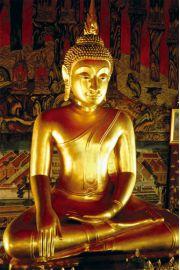 Złoty Budda - Buddha - plakat