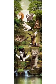 Joga - Zabawne Figury przy Wodospadzie - Koty - plakat