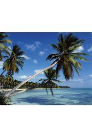 Rajska plaża - Tropiki - plakat
