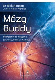 Mózg Buddy