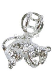 Szczur Chński znak zodiaku