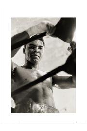 Muhammad Ali Ropes - art print