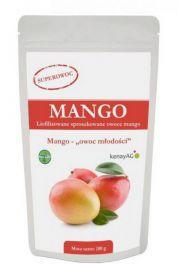 Mango - sproszkowany sok z owoców mango - 100 g