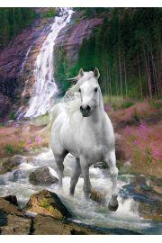 Koń nad Wodospadem Bob Langrish - plakat