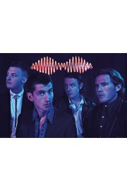 Arctic Monkeys Skład - plakat