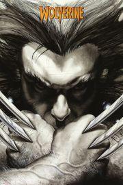 Marvel Extreme Wolverine Szpony - plakat
