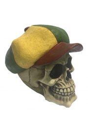 Czaszka w czapce rastamańskiej
