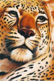 Gepard - Leopard - plakat
