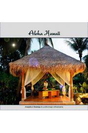 Aloha Hawaii CD - Paweł Lemiesiewicz