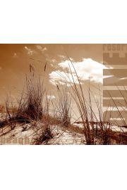 Plaża , Wydmy - plakat