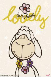Nici - Słodka Owca Jolly - plakat
