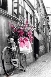 Paryż - Różowe Kwiaty na Rowerze - plakat