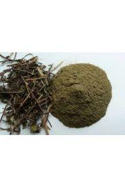 Pudina (Mentha spicata) - mięta
