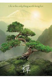 Zen Góra Fudżi - plakat