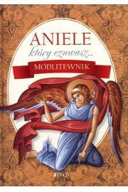 Aniele, który czuwasz... Modlitewnik