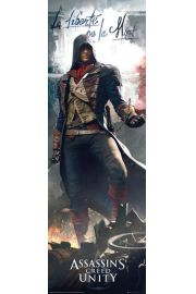 Assassins Creed Unity La Liberte - plakat