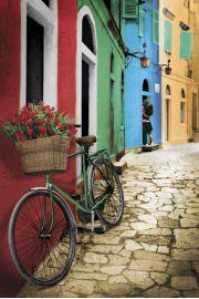 Rower z Bukietem Róż - Uliczki Paryża - plakat