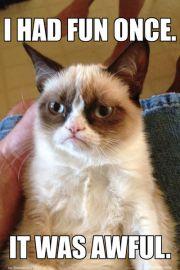 Grumpy Cat Kot Zrzęda - plakat