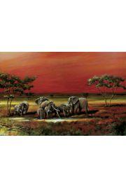Styl Afrykański - Słonie - plakat