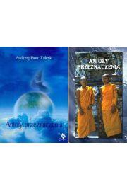 Zestaw Anio�y Przeznaczenia - ksi��ka i karty