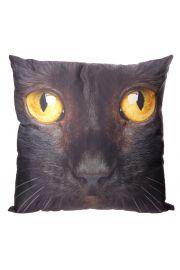 Poduszka 50 x 50cm - Czarny kot