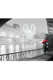 Paryż Katedra Notre Dame Zakochani - plakat
