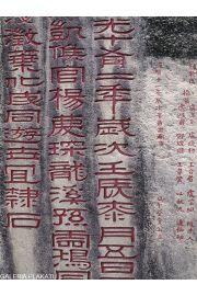 Chiny Putuo Temple - reprodukcja