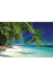 Malediwy - Piękna Plaża - plakat