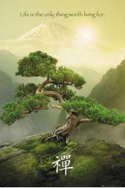 Zen - Góra Fudżi - plakat motywacyjny
