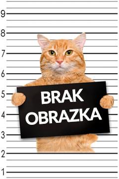Satynowy woreczek czarny kot (na karty tarota)