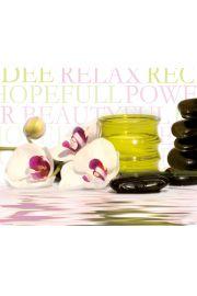 Storczyk Orchidea - Zen Stones - Spa - plakat