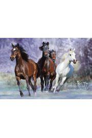 Bob Langrish - Uciekaj�ce Konie - plakat