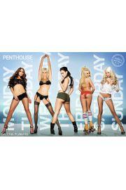 Penthouse Dni Tygodnia - Akt - plakat