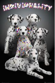 Keith Kimberlin Kolorowe Dalmatyńczyki - Psy - plakat