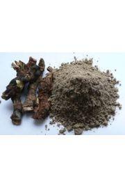 Bojho (Calamus aromaticus) - tatarak zwyczajny