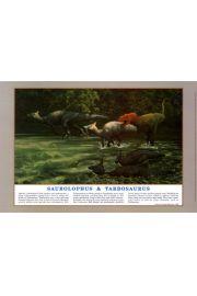 Dinozaury - Zaurolof i Tarbozaur - plakat