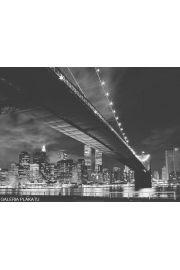 Nowy Jork Manhattan night - reprodukcja