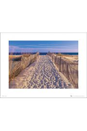 Beach Pathway - art print