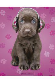 Keith Kimberlin - Piesek Labrador - plakat