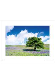 Tree - art print